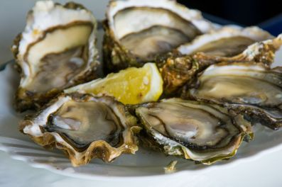 Oysters of Cancal