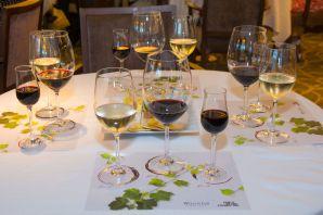 Daily Wine Tasting