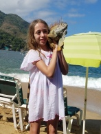 Beach Iguana
