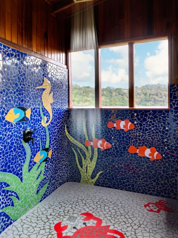 Colorful Design Shower