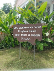 Craighten Coffee Plantation