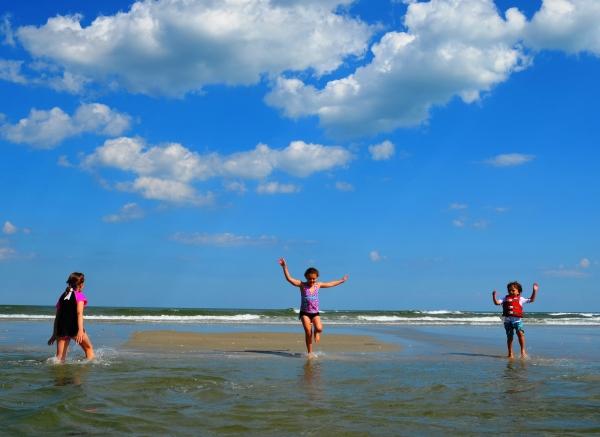 Pawley's Island Beaches